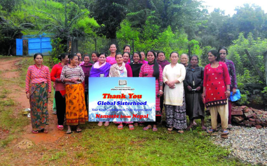Meena Didi Women Education and Literacy Project